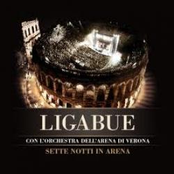 Sette notti in Arena [DVD]