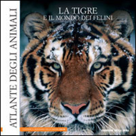 8: La tigre e il mondo dei felini