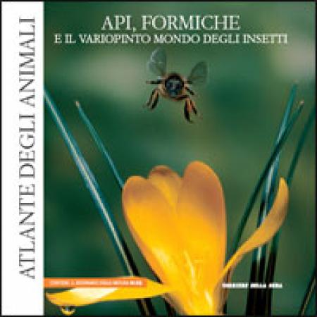 15: Api, formiche e il variopinto mondo degli insetti