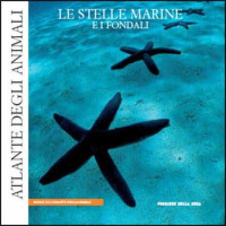 18: Le stelle marine e i fondali
