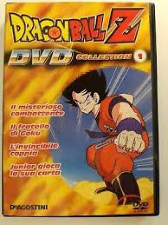 Il  misterioso combattente [DVD]