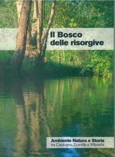 Il bosco delle risorgive